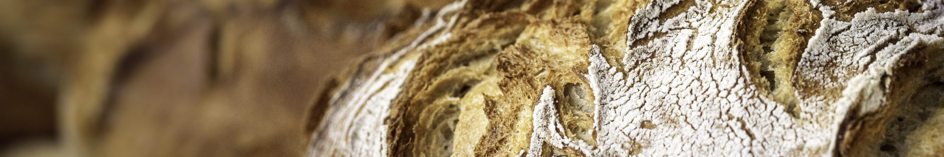 Round bread close-up. Freshly baked sourdough bread with a golden crust on bakery shelves. Baker shop context with delicious bread. Pastry items.